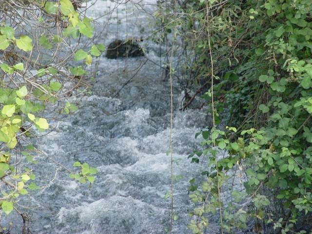 מים זורמים בנחל 2