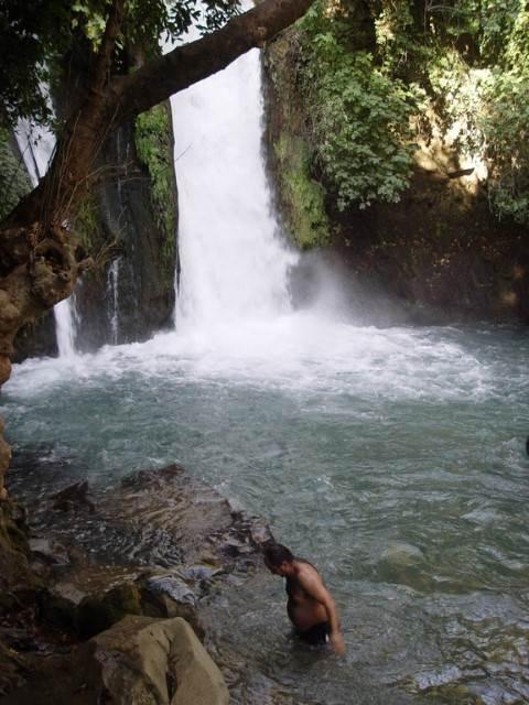 בריכת מים ומפל