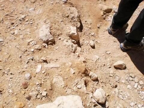סלעי חול